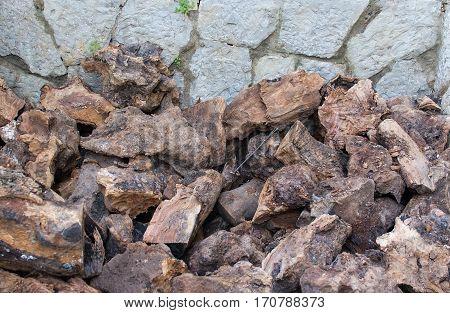 Olive Firewood Closeup