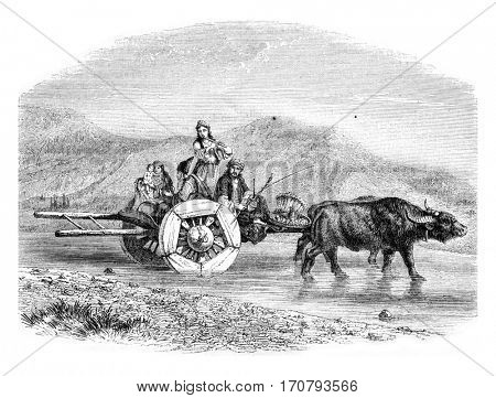 Cultivator Forklift Khosrovani, Persia, vintage engraved illustration. Magasin Pittoresque 1852.
