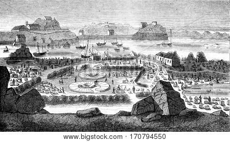 View of the studio work when checking stones in the yards of the island of Brehat, vintage engraved illustration. Magasin Pittoresque 1845.