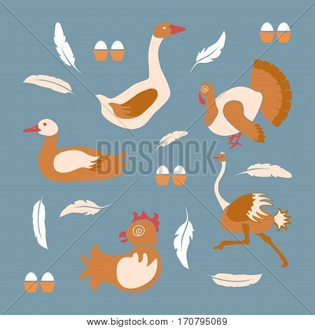 Poultry farm banner or flyer. Set of isolated birds icons in flat decision. Logo of organic products.  Vector illustration eps 10