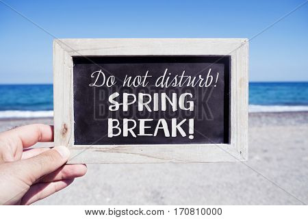 closeup of a young caucasian man holding a wooden-framed chalkboard with the text do not disturb, spring break written in it, on the beach