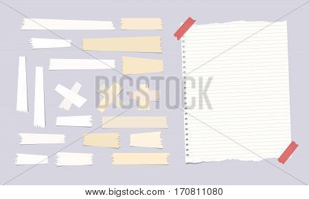 Sticky, adhesive masking tape, ripped note, notebook, copybook paper sheet on gray background.