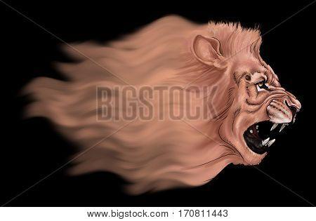 Flying lion's head in profile. Digital Illustration