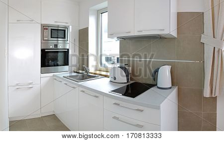 Small White Kitchen Interior in Contemporary Apartment