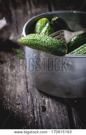 Preparation Of Low-salt Pickled Cucumbers