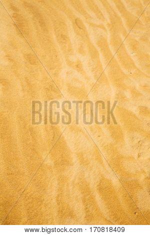 Brown   Dune   The Sahara Morocco Desert