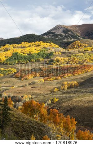 Autumn view from Gothic Rd near Crested Butte Colorado