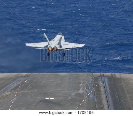 Hornet Taking Flight