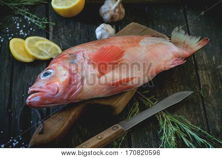 Raw Grouper