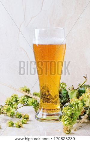 Glass Of Lager Beer
