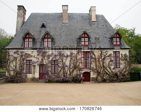 A quaint French house with red doors covered in Wisteria.