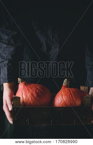 Hokkaido Pumpkins In Woman's Hands