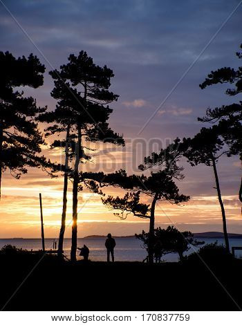 Beautiful Sunset Silhouette Of Trees And Sea In Background And People Walking