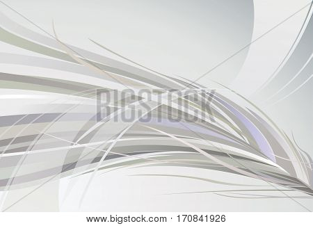 Abstract gray background. Light gray background. White and gray.