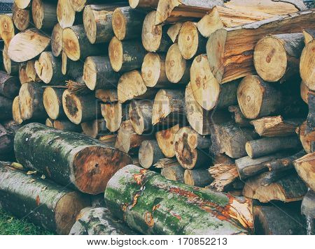 Pile Of Firewood. Preparation Of Firewood