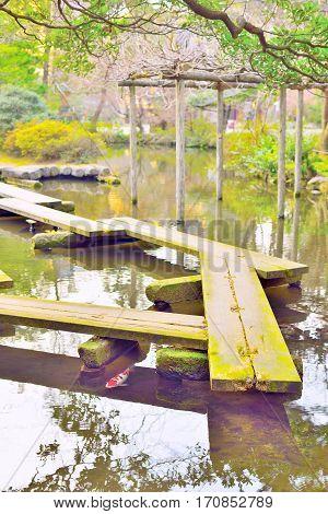 Wooden plank bridge yatsuhashi and carp fish in Japanese garden. Kanazawa Japan.