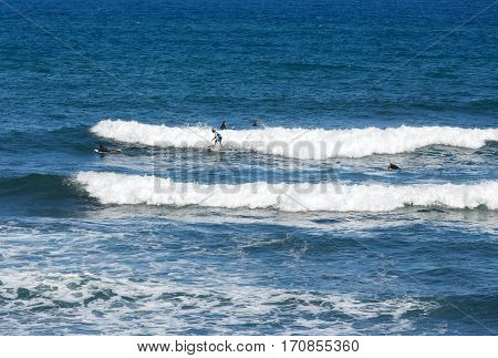 MADEIRA, PORTUGAL - SEPTEMBER 9, 2016: Surfers in action on Madeira Island. Portugal