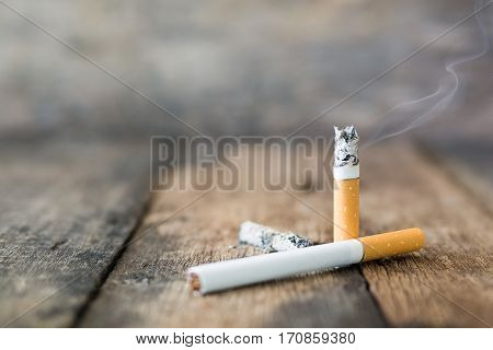 Still Life Cigarette