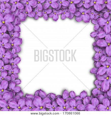 square frame of lilac flowers. Purple flowers.Vector