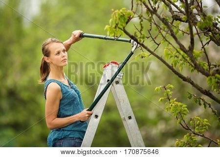 Pretty, young woman gardening in her orchard/garden (color toned image)