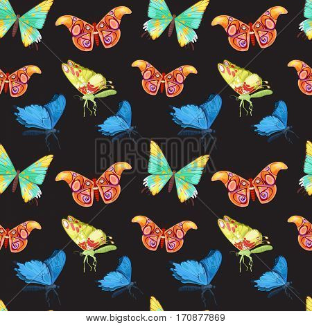 Colorful Tropical Butterflies Seamless Pattern. Vector background