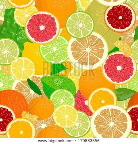Juicy Citrus fruits set. Bright and vivid. Yellow, orange, red, green. Whole and slices, seamless pattern vector. realistic whole fruits and slices. Bergamot, lemon, grapefruit, lime, pomelo, orange.