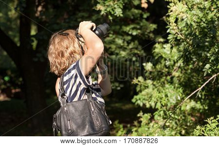 Woman photographer working in the park