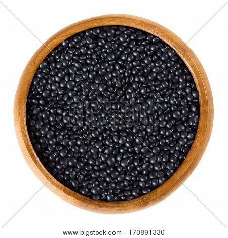 Beluga lentils in wooden bowl. Black lentils, edible pulse with bead-like shaped seeds. Lens shaped dried fruits of Lens culinaris. Isolated macro food photo close up from above on white background.