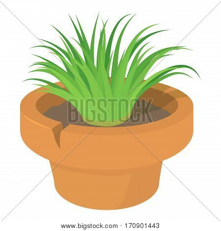 Home plant icon. Cartoon illustration of home plant vector icon for web