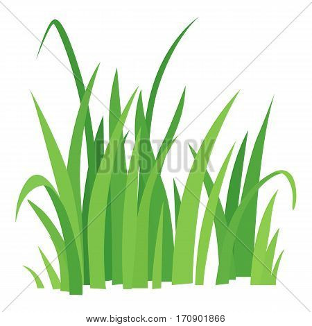 Grass icon. Cartoon illustration of grass vector icon for web