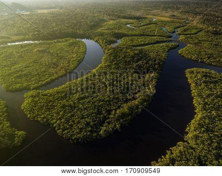 Aerial view of wetlands