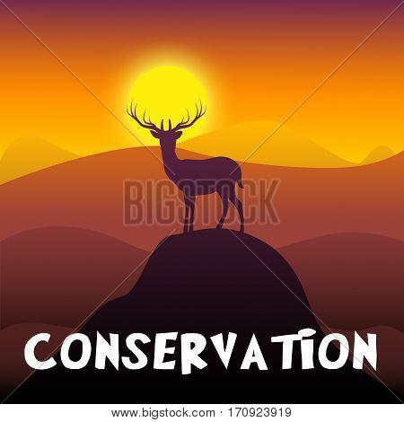 Wildlife Conservation Shows Animal Preservation 3D Illustration