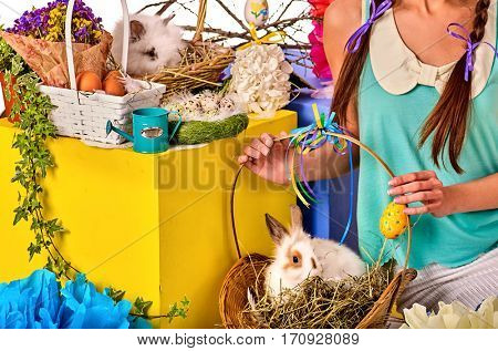 Easter bunny in girl's hands. Cropped shot of decoration egg holding by woman. Holiday style holding and group of rabbits in basket with flowers. Isolated. Young woman with present box at home.
