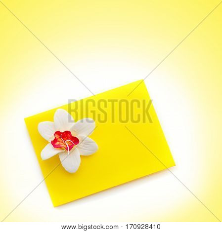 Closeup shot of small yellow envelope decorated with art clay narcissus. Handmade paper work. Copy space. Over yellow background. Square composition.