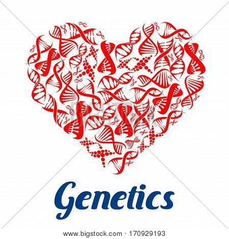 Heart composed of DNA helix. Love genetics poster with red models of DNA strands in a shape of human heart. Science, love and biotechnology themes design