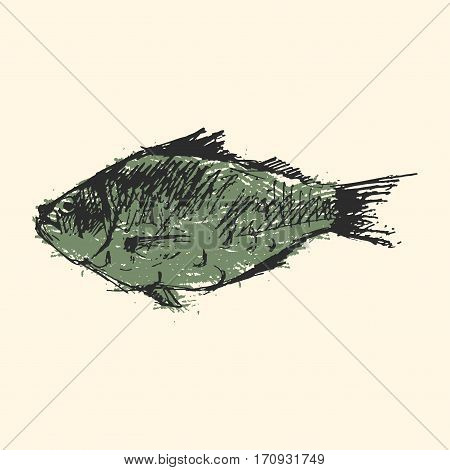 Craft sketch fish animal nature food and ecology environment. Tropical natural thunnus icon isolated on white. Saltwater healthy big seafood nature art.