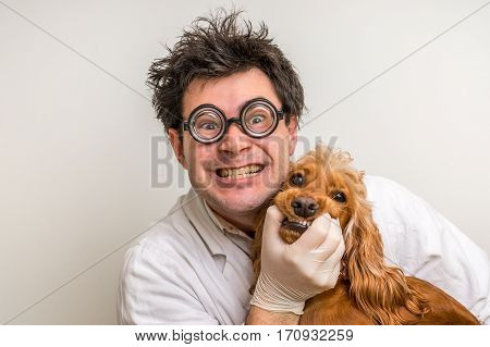 Crazy veterinarian and funny smiling dog - animal and pet veterinary care concept