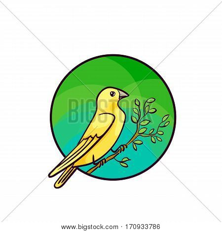 Canary bird. Animal art, cute cartoon style, vector hand drawn illustration. Suitable for pet shop or zoo ads, label design or animal food package element