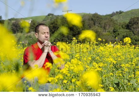 Man praying hidden in a field of flowers.