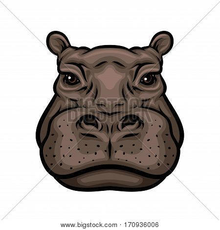 Hippo head cartoon icon. African hippopotamus mammal animal isolated symbol for wildlife themes, zoo sign, t-shirt print design