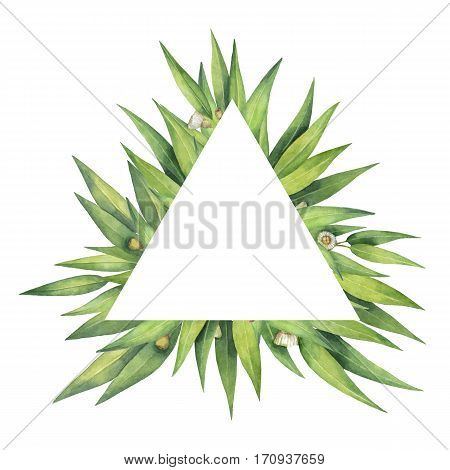 Watercolor hand painted triangular wreath with eucalyptus leaves and branches. Healing Herbs for cards, wedding invitation, posters, save the date. Spring or summer flowers with space for your text.