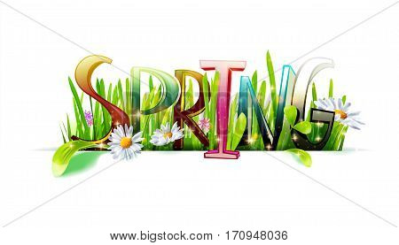 Spring lettering word with realistic grass and chamomiles isolated on white background. Typography background. Floral banner. Vector illustration