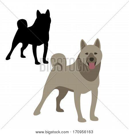 kai ken dog vector illustration style Flat