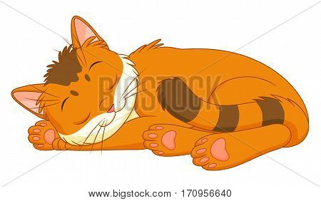 Cute cartoon chinchilla kitten sleeping on the white background.