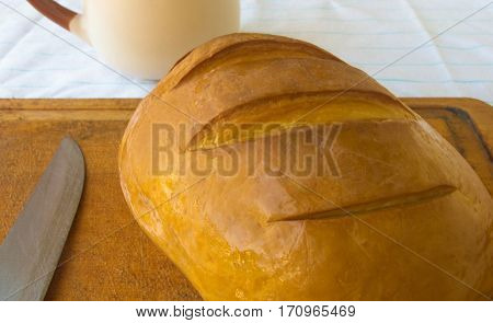 head of traditional Adygei cheese handmade with knife and a Cup of coffee on wooden Board