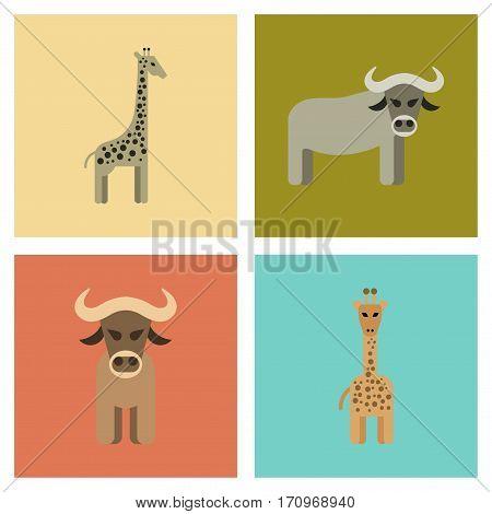 assembly of flat icons nature giraffe bull