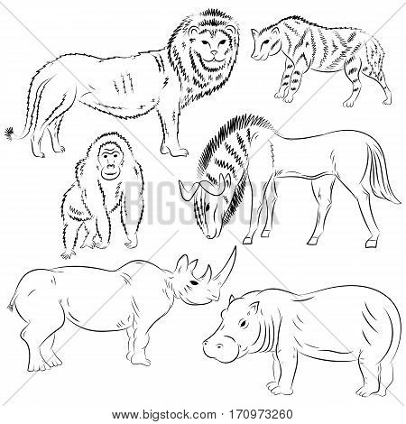 Hand Drawn African Wilde Animals. Doodle Drawings of Lion Stripped Hyena Gorilla Wildebeest Hippo and Rhinoceros. Sketch Style. Vector Illustration.