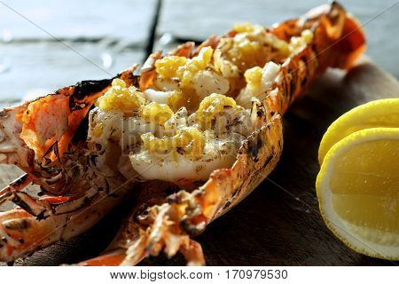 Lobster Prawn Food