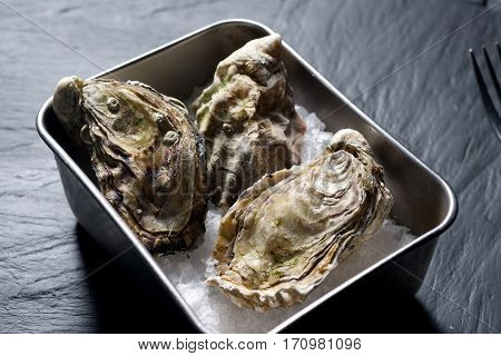 Raw Oysters In Container