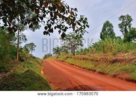 Road In Uganda, Africa